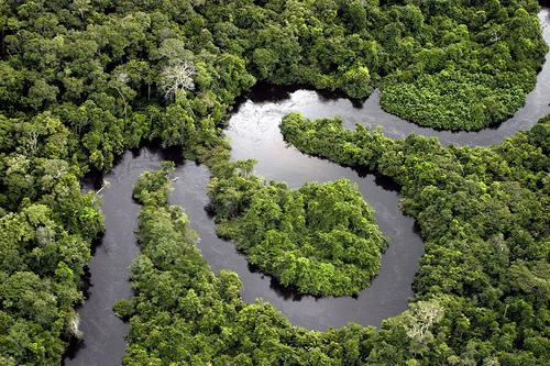 Амазонка — самая длинная река в мире